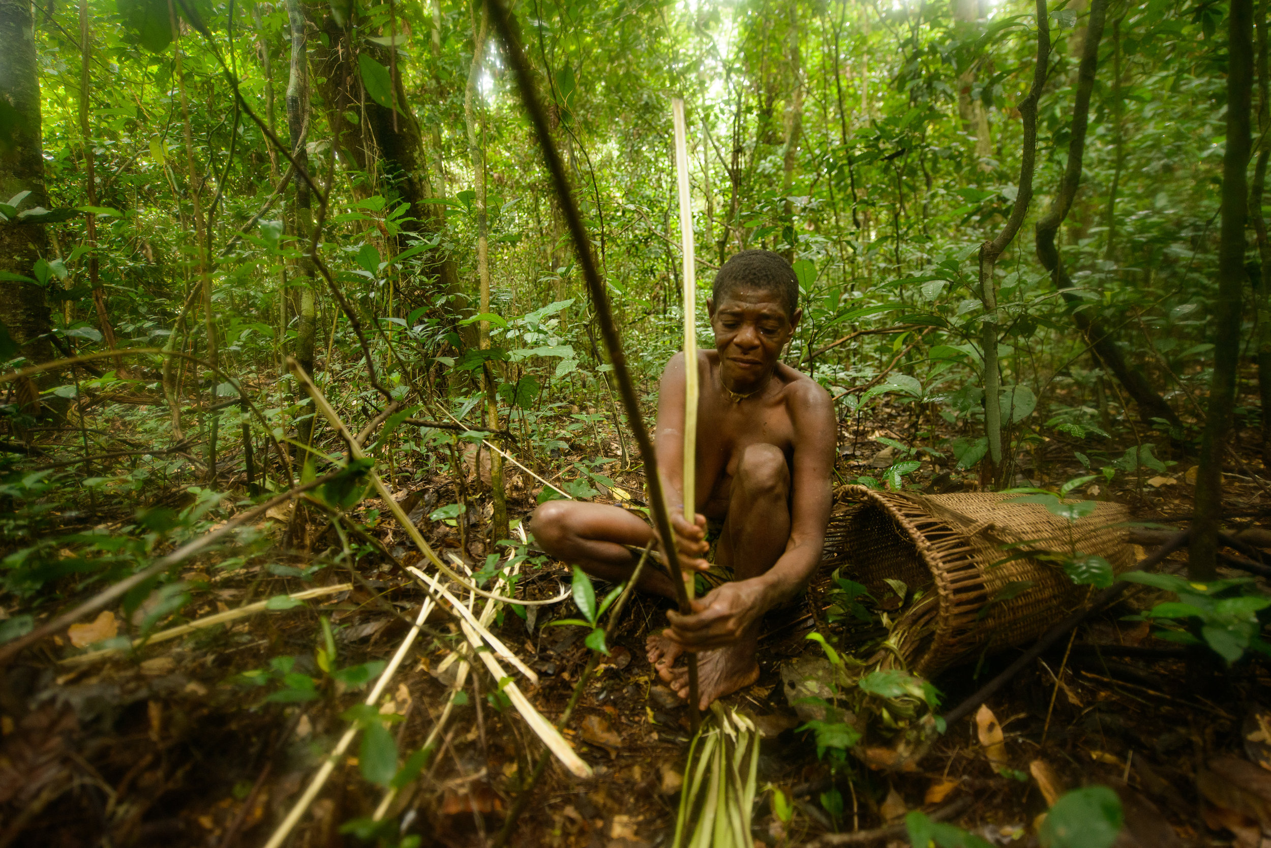 The Bayaka - Life in the middle of the equatorial rainforest of central Africa