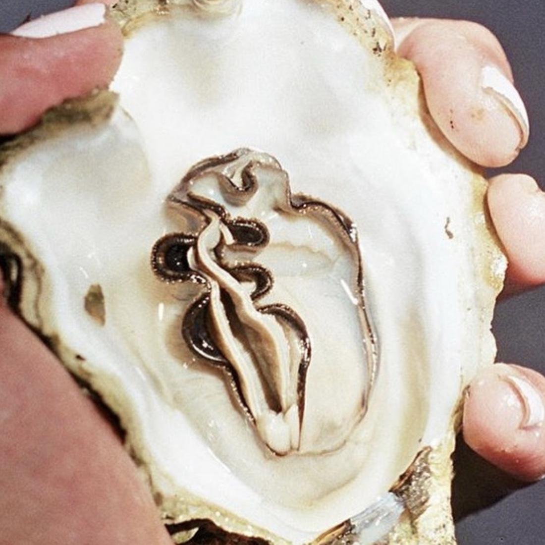 oyster-divine-feminine.jpg