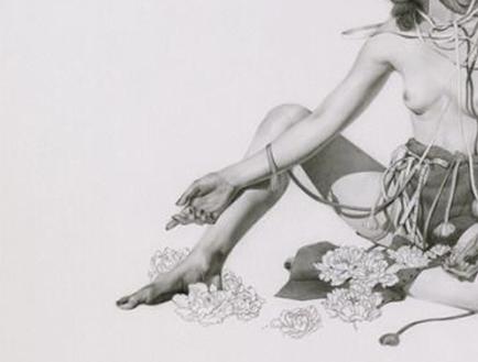 The Tender Art of Soey Milk - Visual art