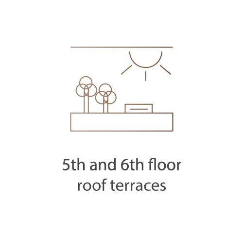5th and 6th Floor Roof Terraces