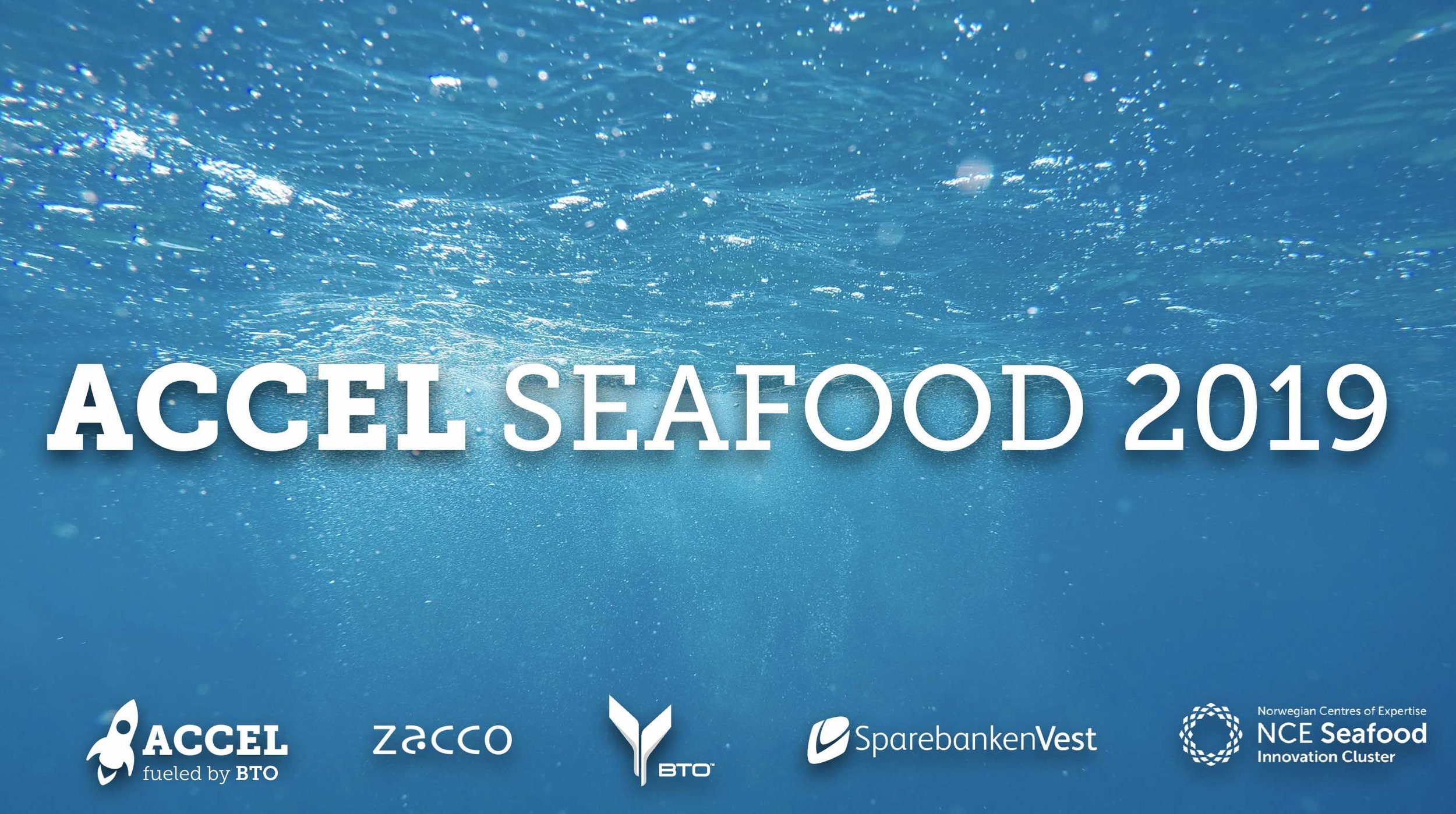 ACCEL Seafood 2019.jpg