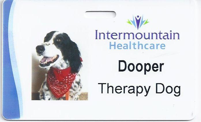 Doopers-TD-badge.jpg