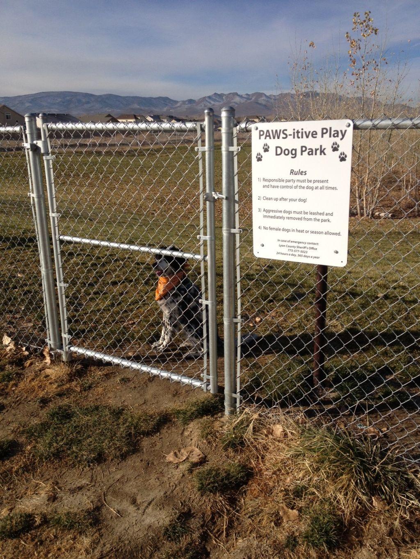 dooper-dog-park.jpg