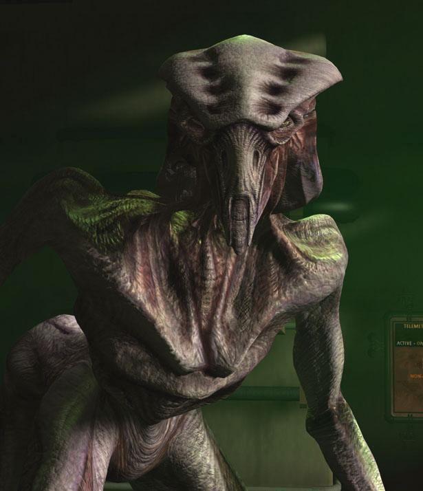 Species 8472