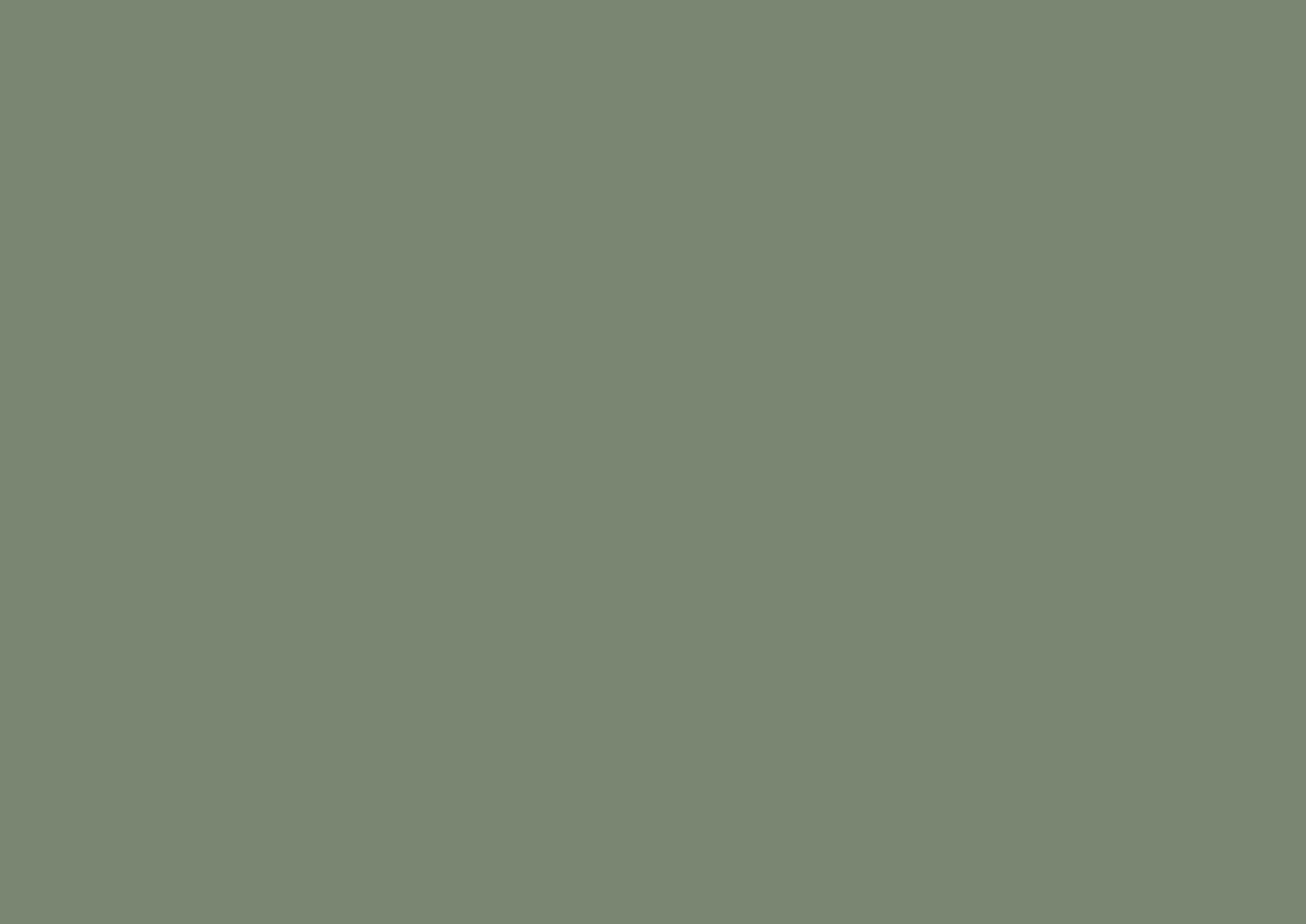 Khaki Green -