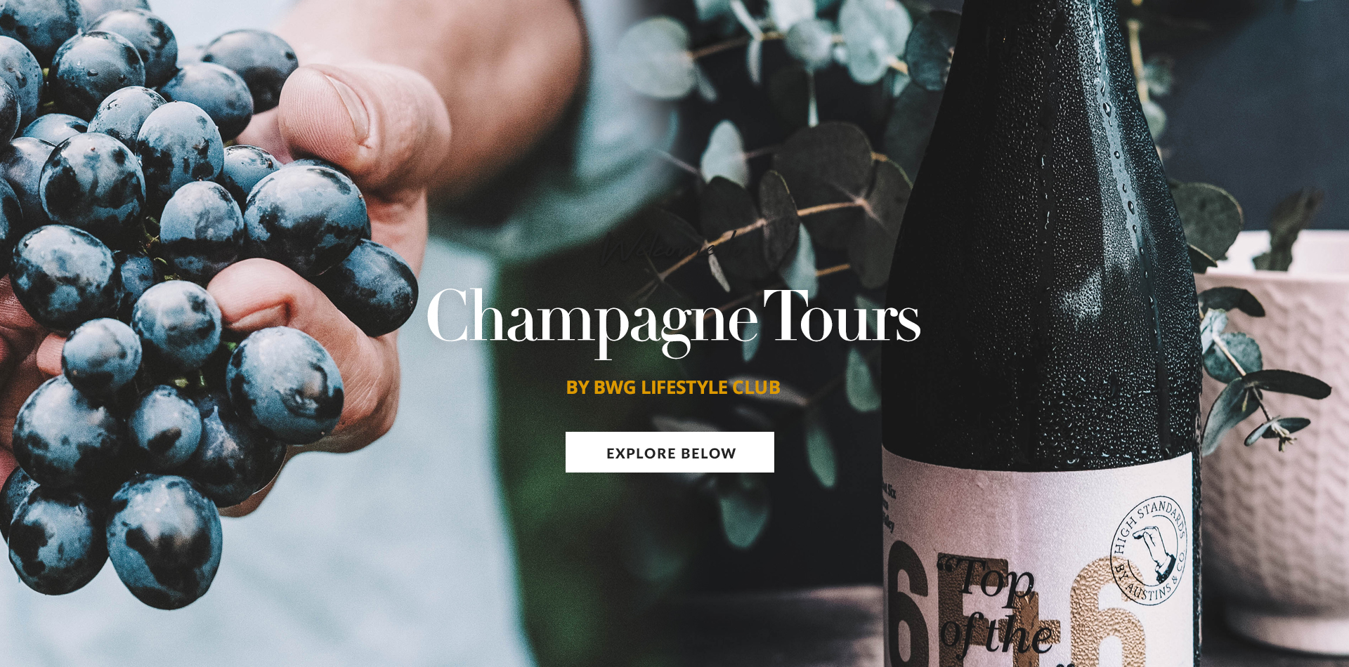 champagne tours page banner.jpg