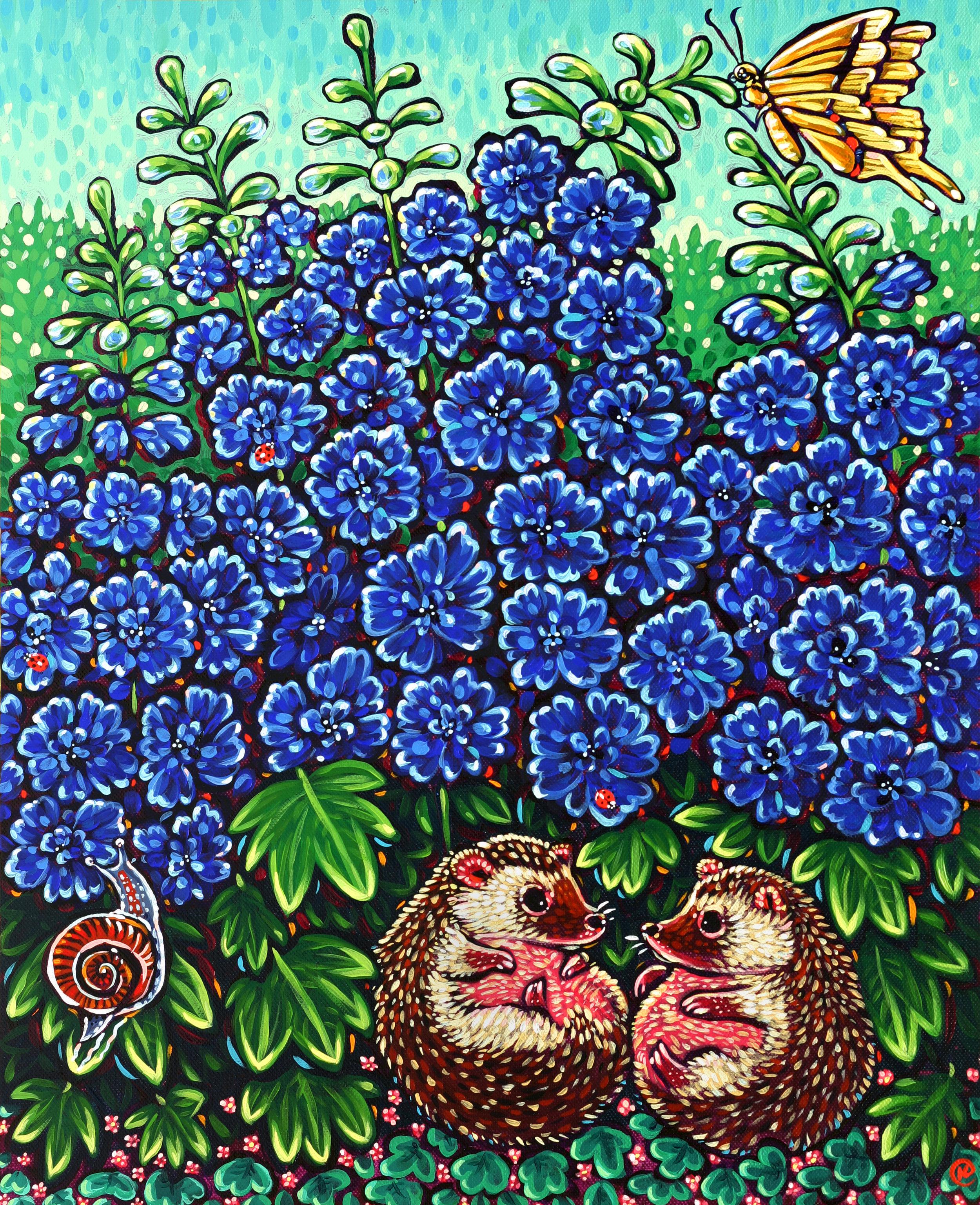 Delphinium Hedgehogs