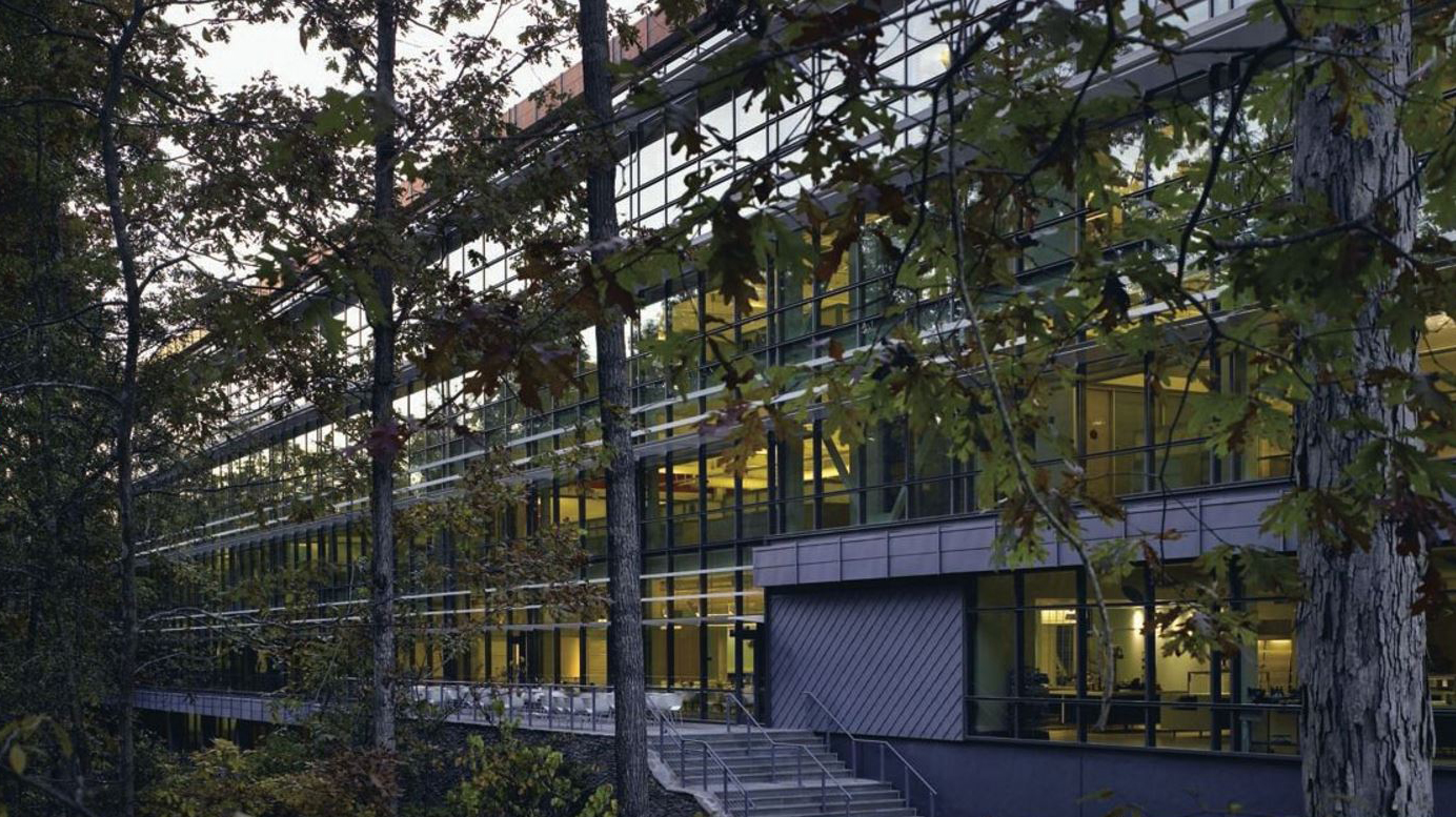 CORPORATE HEADQUARTERS DUSK THRU TREES 2 - OOMBRA ARCHITECTS
