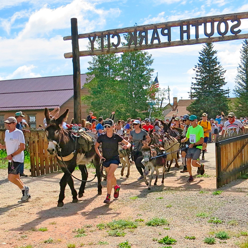 Burro days - FairplayJuly 26-28, 2019An annual event in Fairplay since 1949, Burro Days celebrates the role of the burro in the mining days. Participate in the race, or enjoy the parade, food, music and other activities! More Info >
