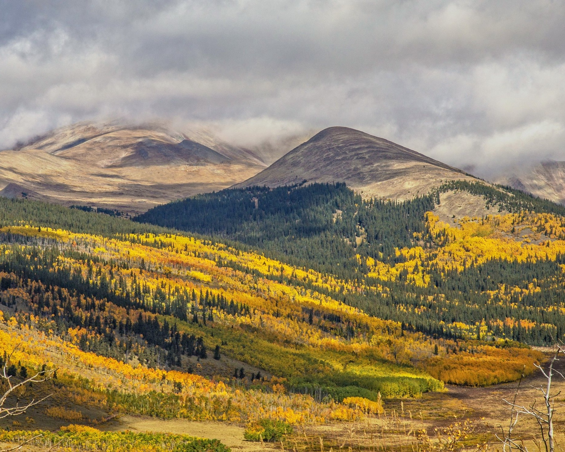 From the blog - Find the best fall colors in colorado