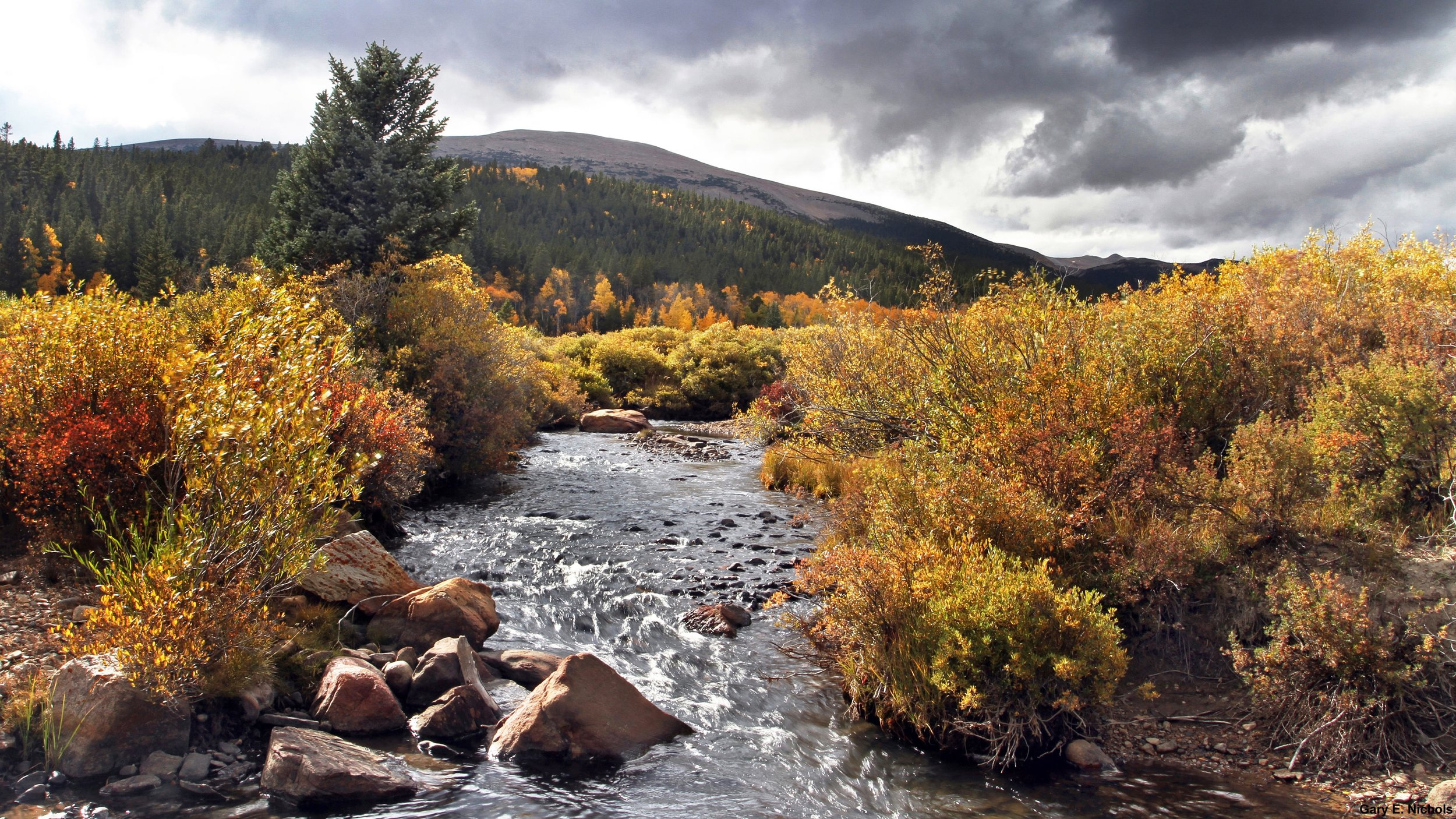 - Known as the Trout Capital of Colorado, Park County is a great place to reel in some fish with a side of beautiful fall views. Photo by: Gary E. Nichols