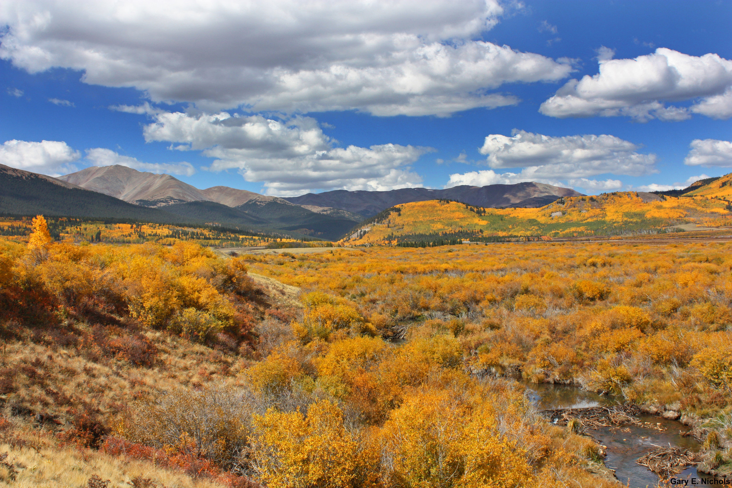Cline Ranch - It's not all about Aspens when it comes to fall beauty. Valleys all along HWY 285 display their true colors too. Photo by: Gary E. Nichols