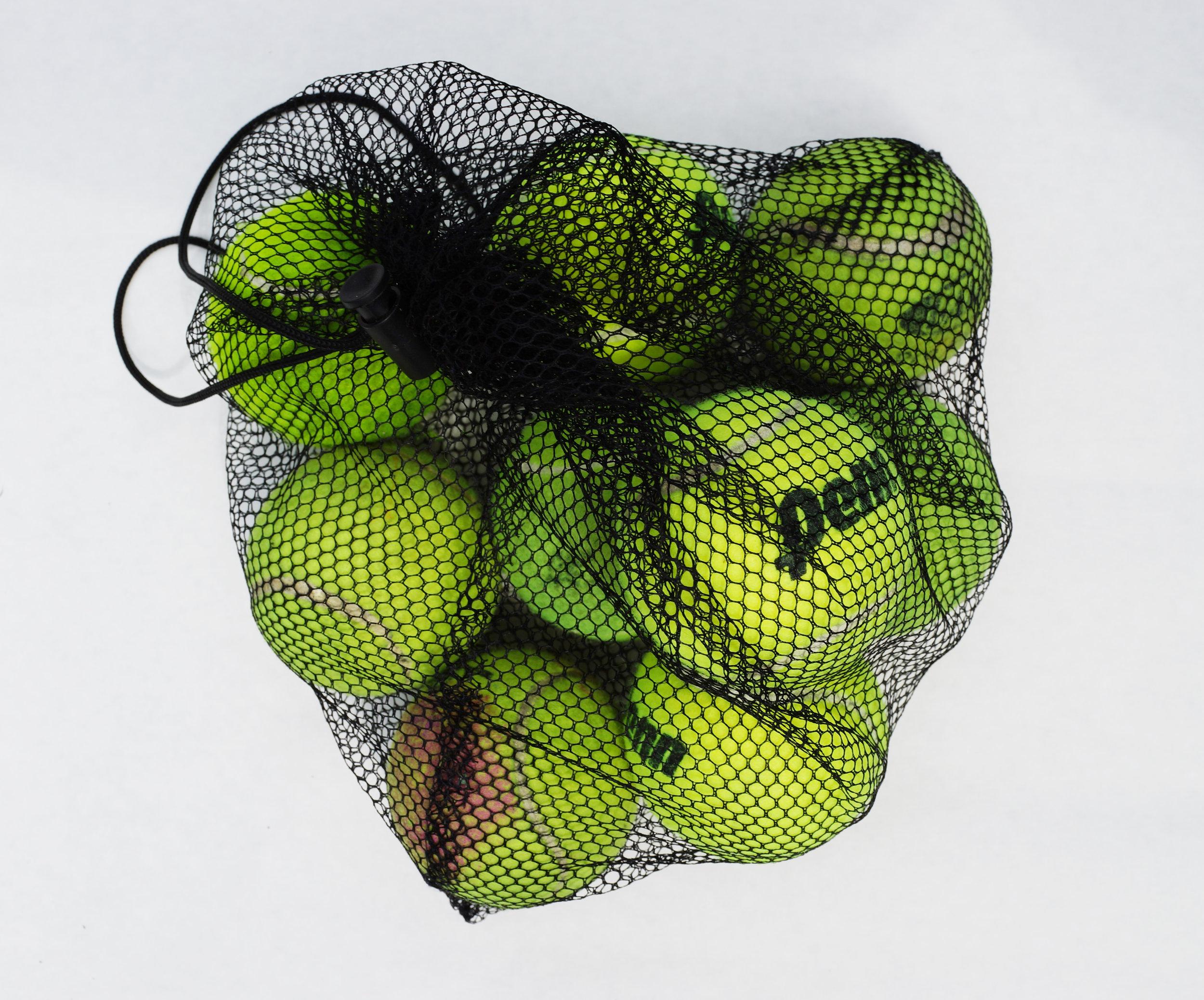 fig,danBag-o-Balls.jpg