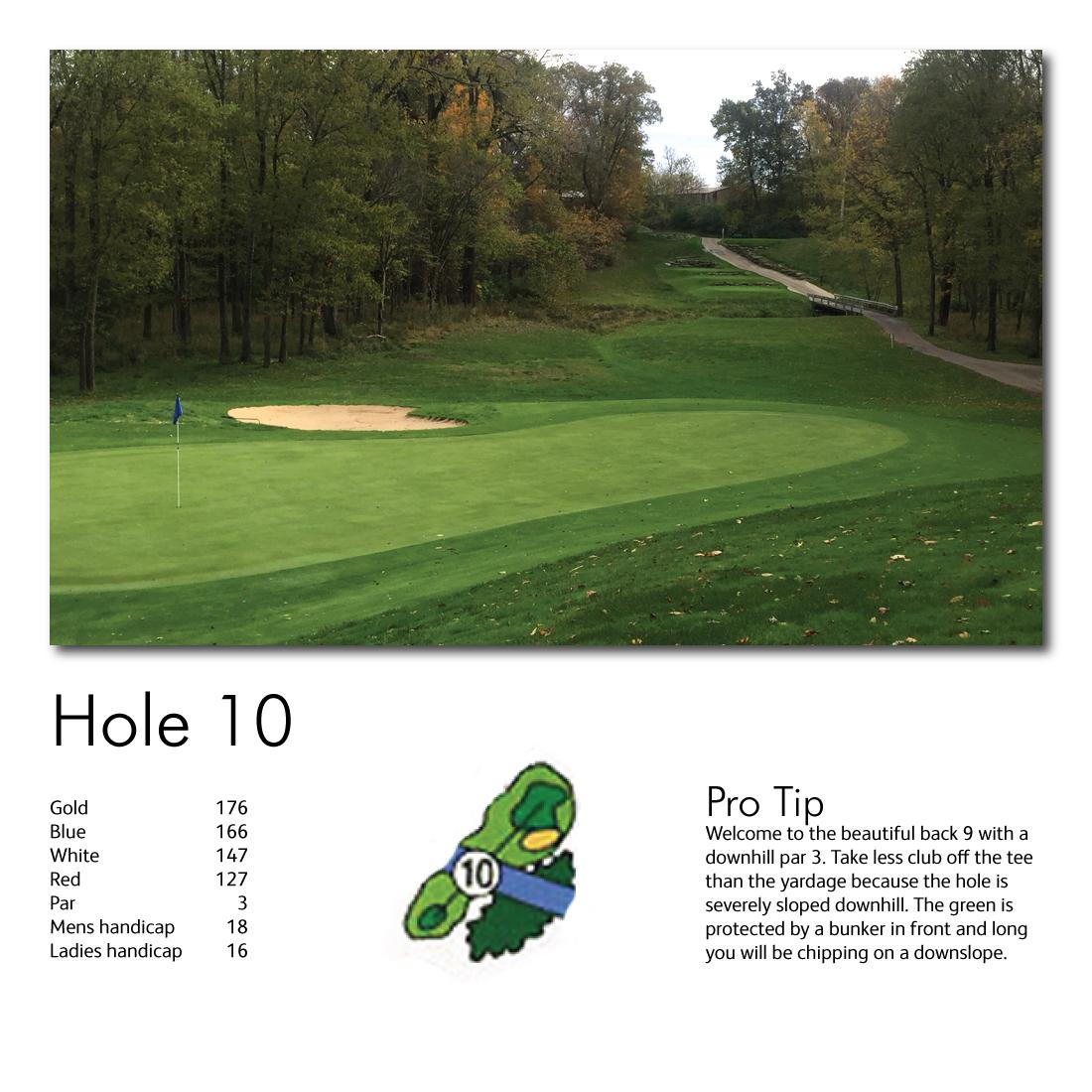 Hole-10-web-image.jpg