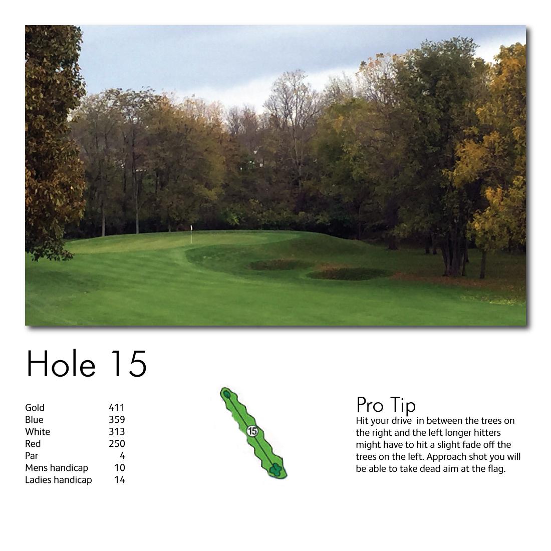 Hole-15-web-image.jpg