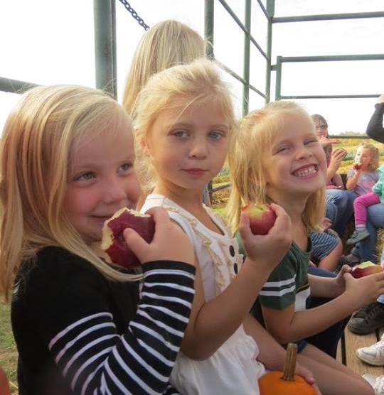 Fall Pumpkin Patch & Hayride Event