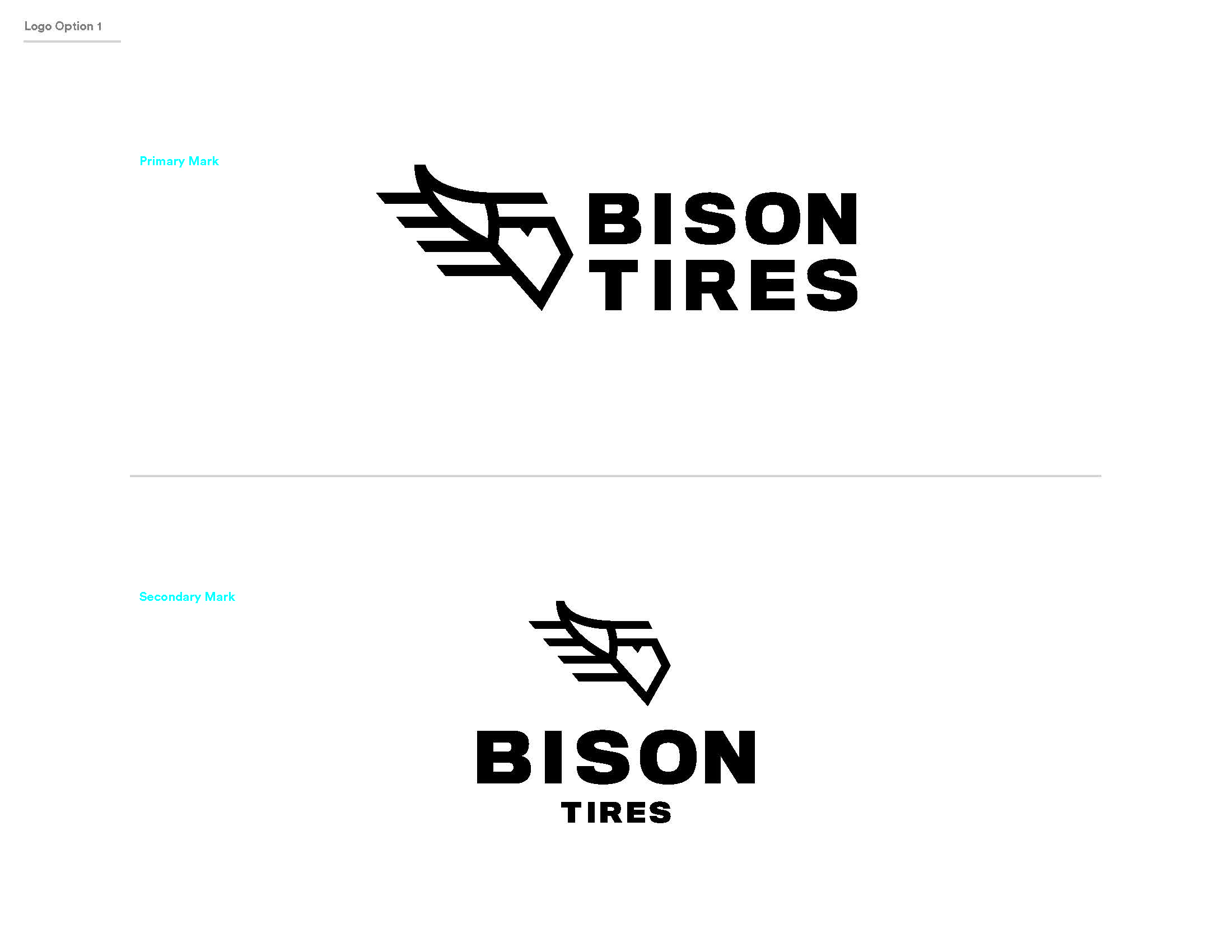 BisonTire_Working_Page_2.jpg