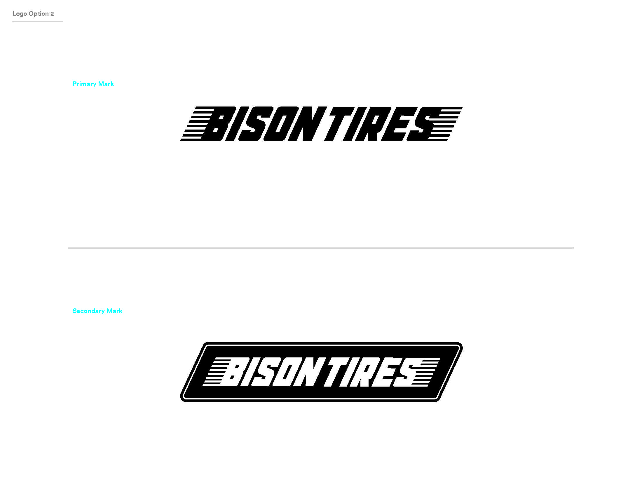 BisonTire_Working_Page_3.jpg