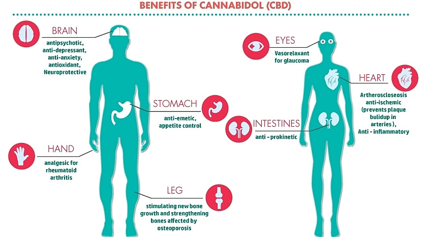 cbd-benefits.jpg