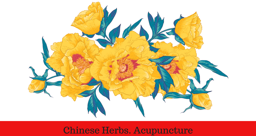 Chinese Herbs. Acupuncture.png
