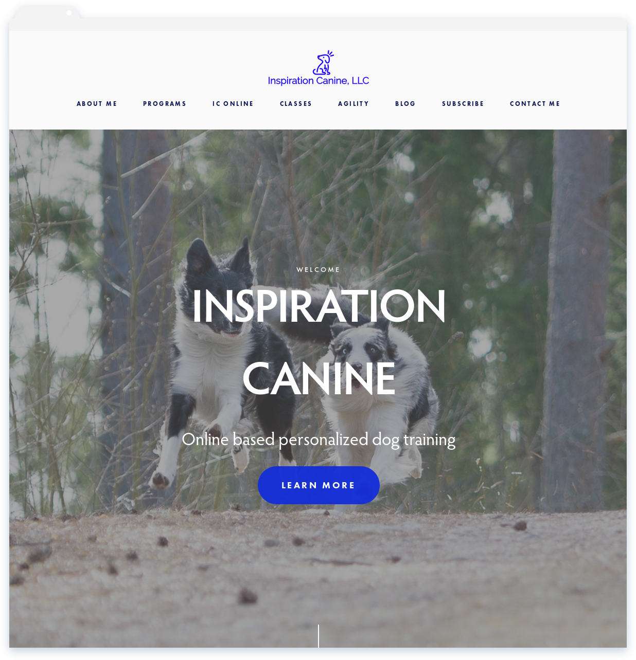 Inspiration Canine, Instuctor -
