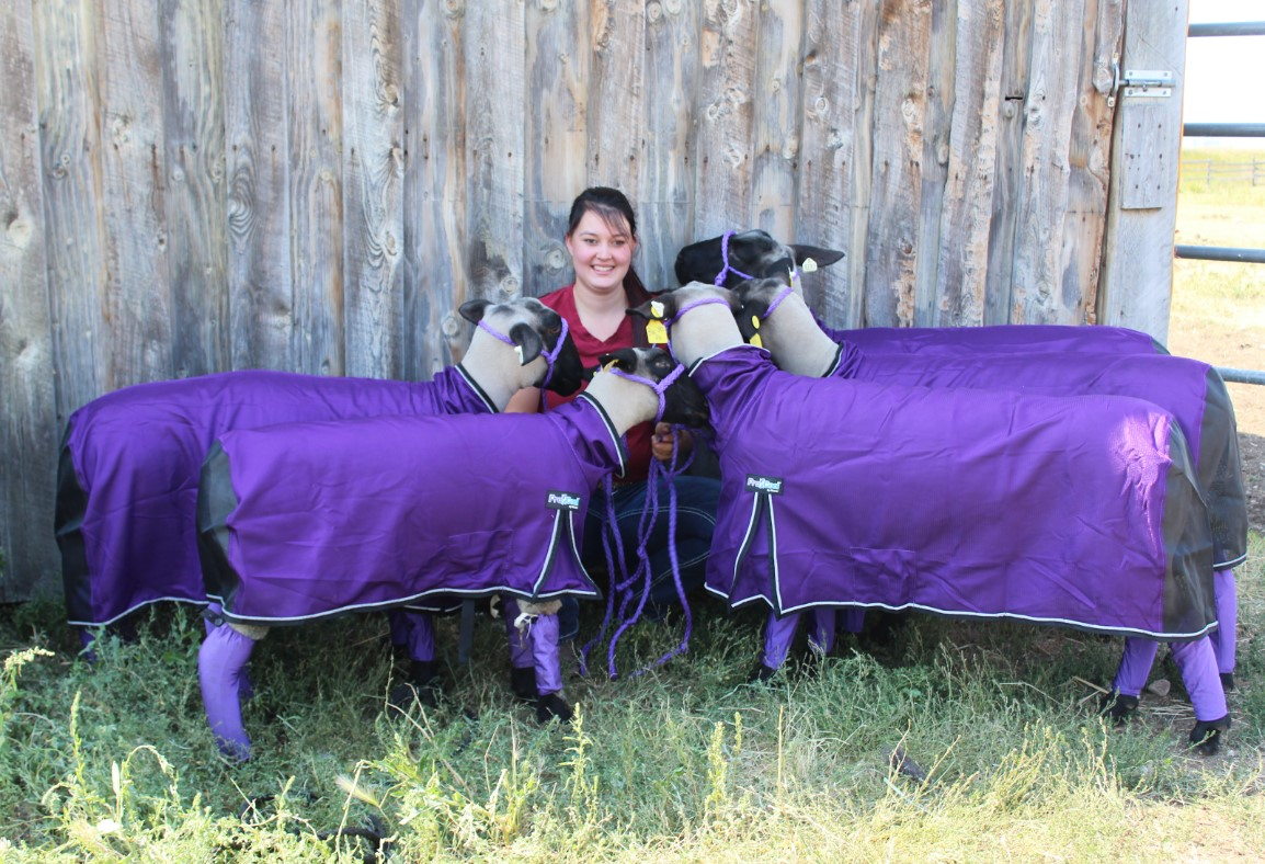 Bailee Johnson - Bailee grew up in Washington and her and her family moved to Montana her freshman year of high school. She is very involved in 4-H and the community. She was a superintendent at the 2017 & 2018 Tri-County Fair. She is currently raising her own stock which includes: horses, sheep, cows, goats, and pigs. She enjoys going to rodeos, horse events, and showing livestock with her family in her free time. She is a Kennel Assistant for CFVC and hopes to become a Vet Tech in the future.