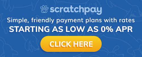 Copy of scratchpay-button-250x100@2x.png