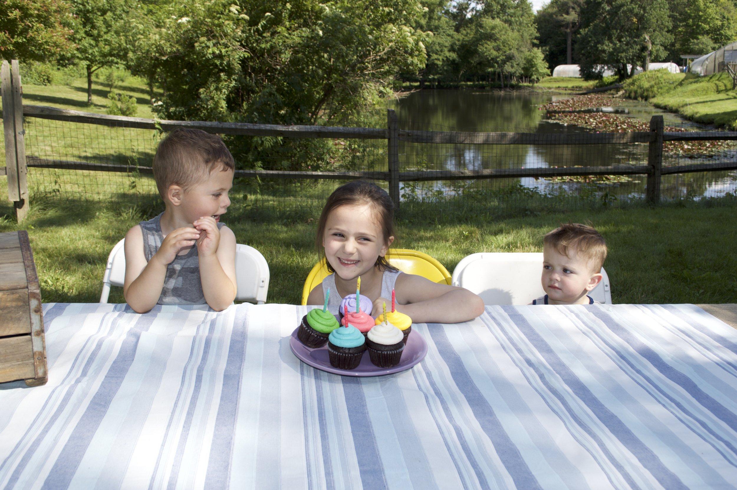 birthdays - cupcakes.jpg
