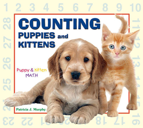 Counting-cover--680-exp+(3).jpg