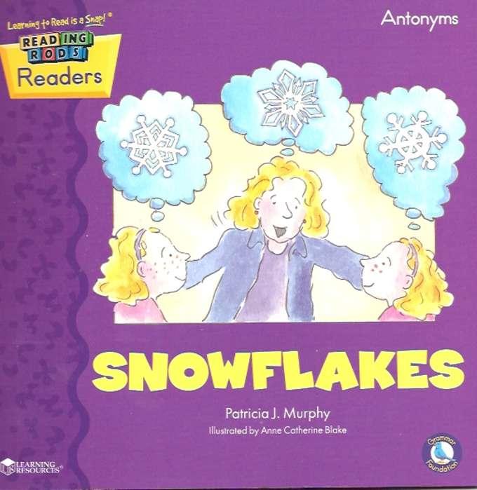 Lr_rr_snowflake-680-exp.jpg