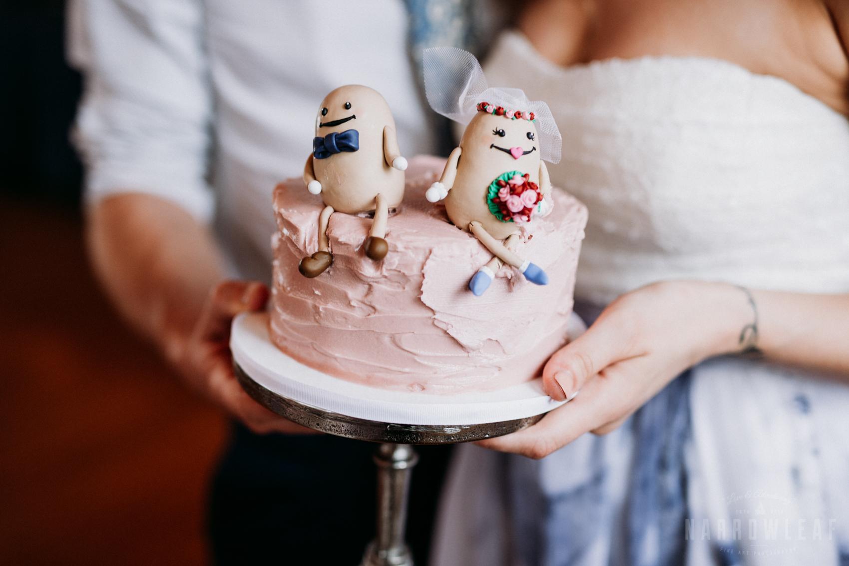 bayfield-wi-lake-superior-wedding-reception-blue-cake-14.jpg