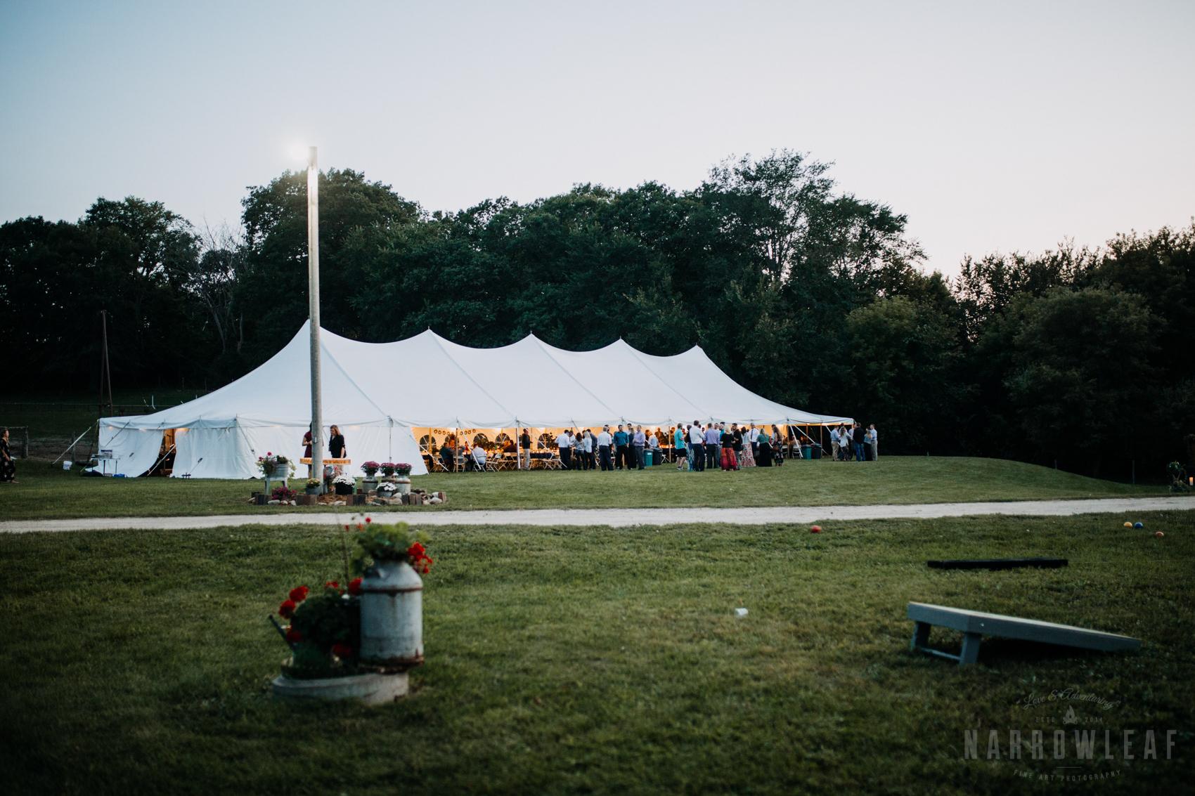 summer-tent-wedding-reception-in-south-haven-mn-32.jpg