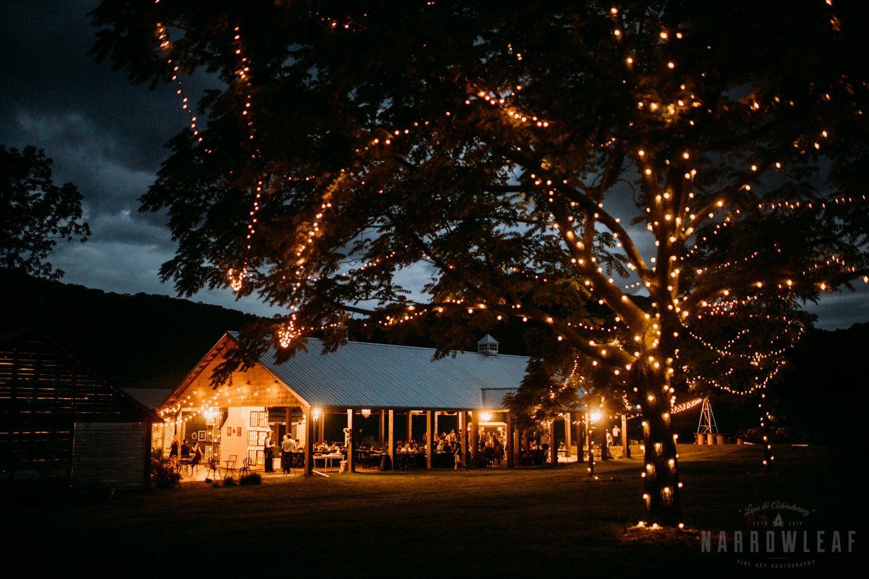 outdoor-cafe-lights-wedding-reception-the-hidden-meadow-and-barn-pepin-wi-9.jpg