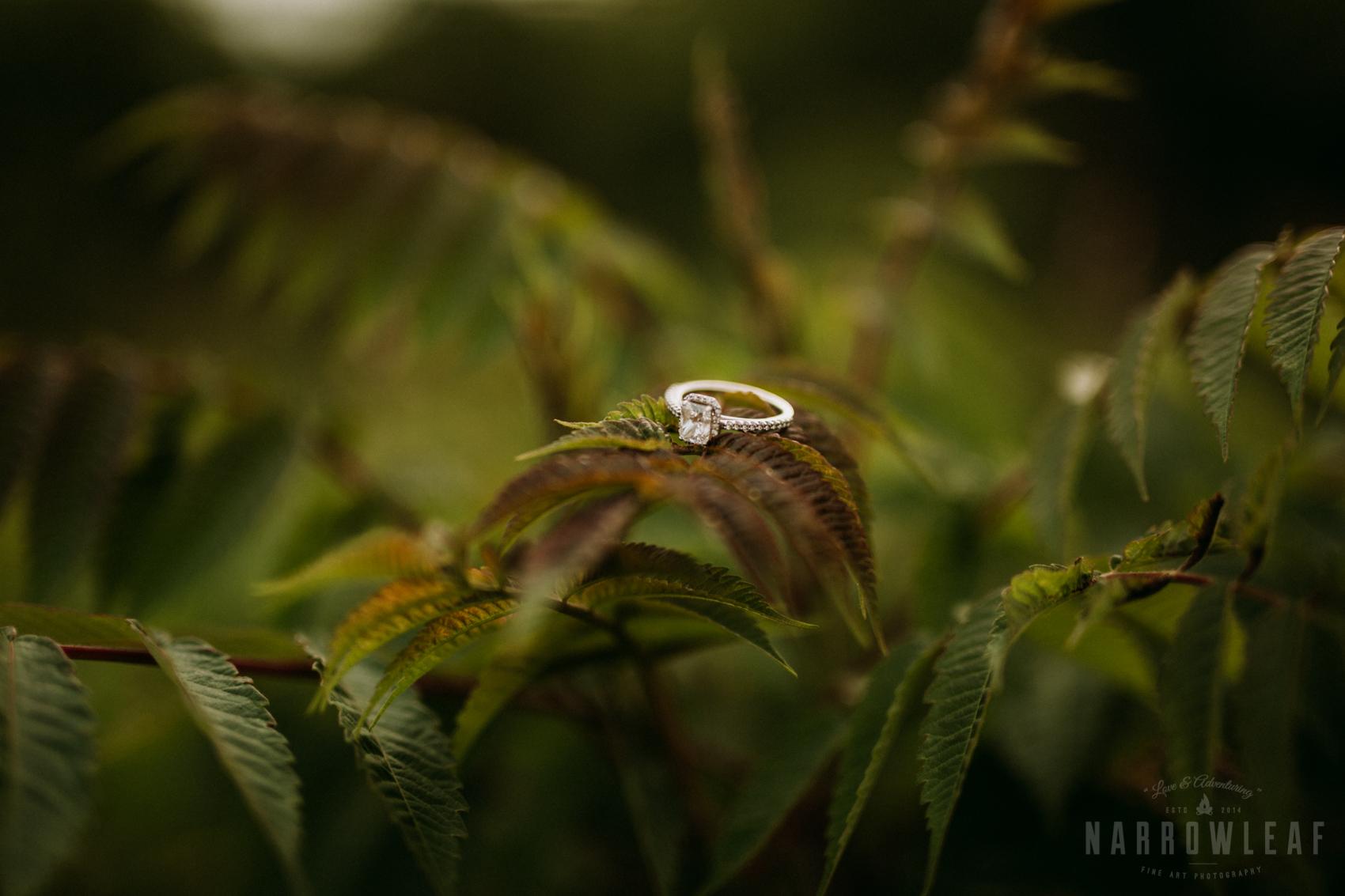 summer-engagement-photos-frontenac-mn-NarrowLeaf_Love_&_Adventure_Photography-14.jpg