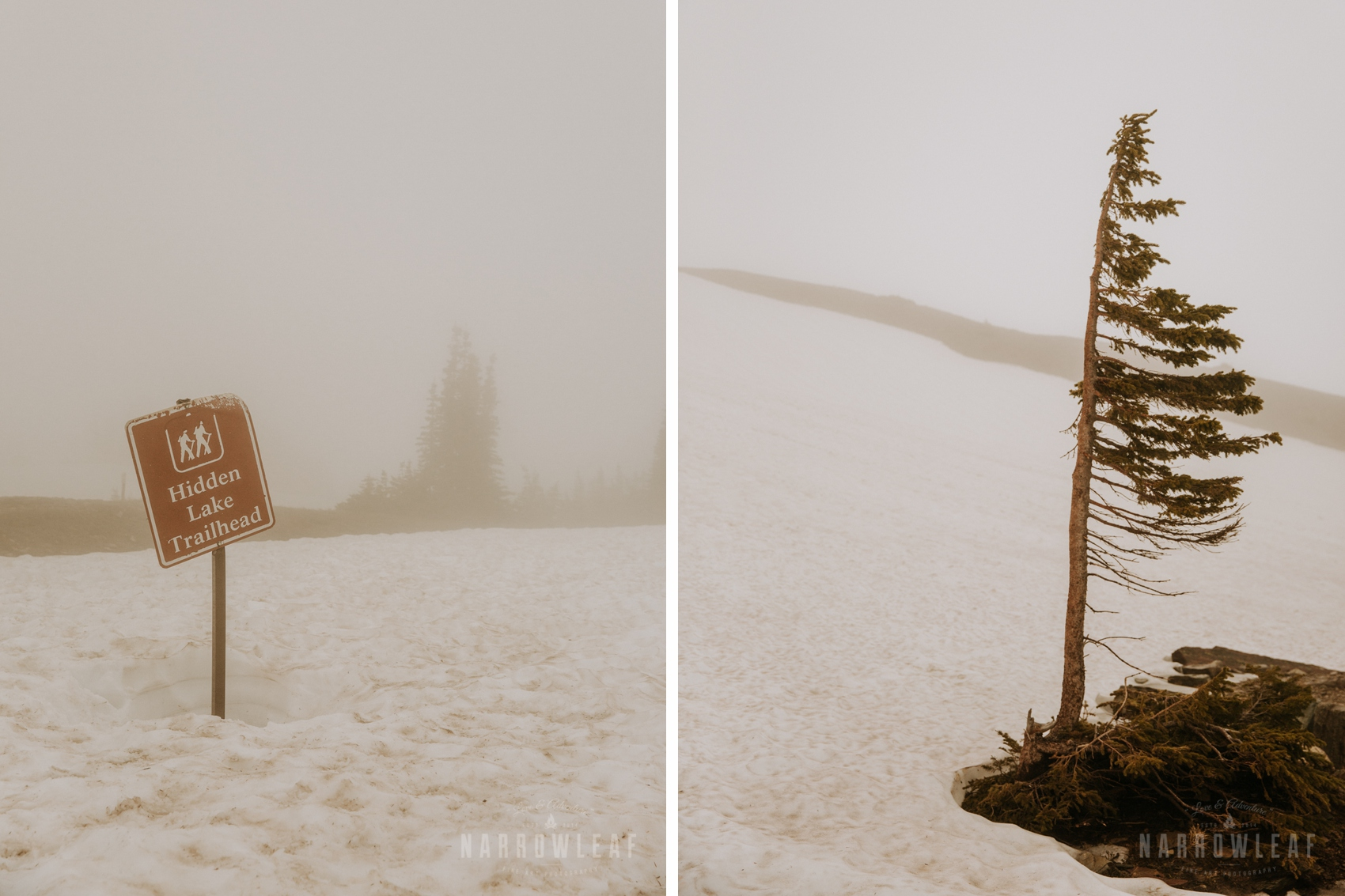 logan-pass-hidden-lake-trail-couple-photo.jpg