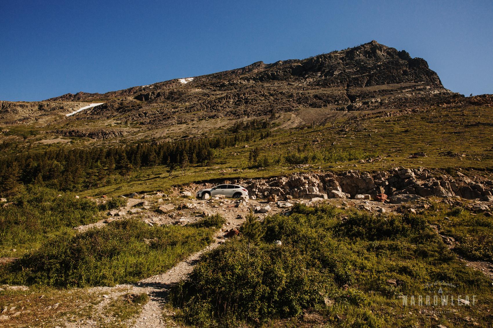 Montana-Glacier-National-Park-Many-Glacier-Narrowleaf-Love-and-Adventure-elopement-Photography-9271.jpg