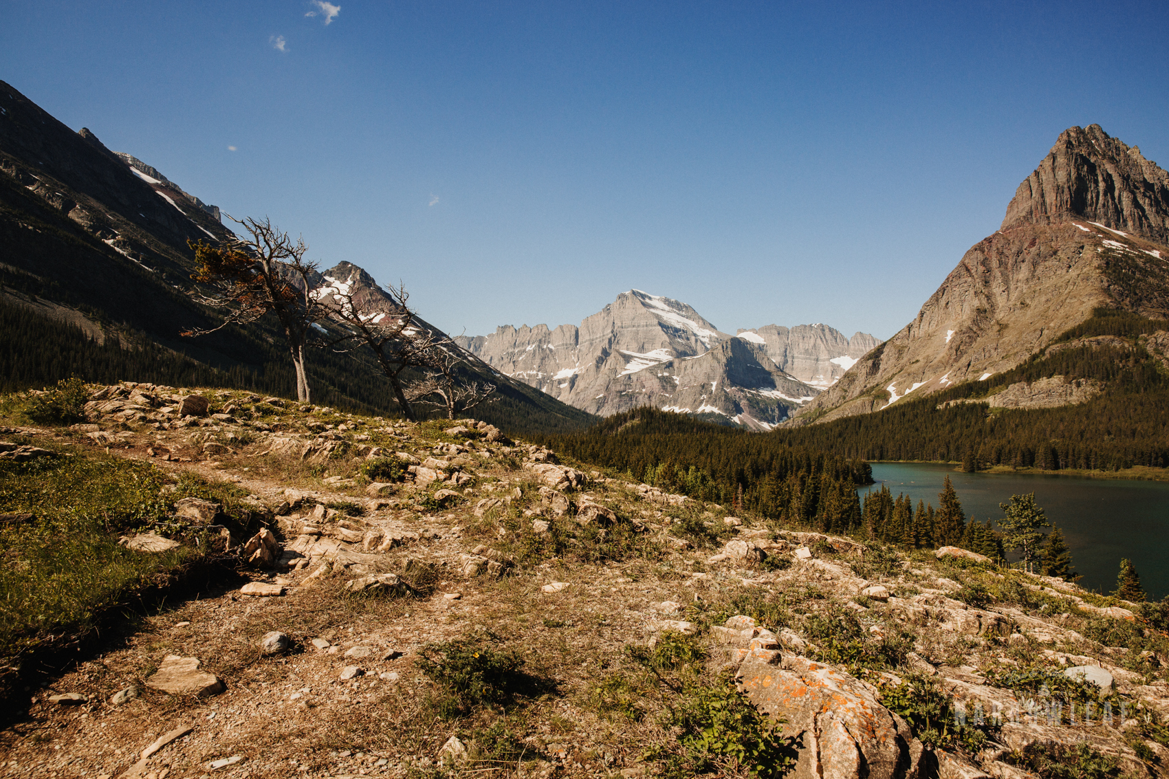Montana-Glacier-National-Park-Many-Glacier-Narrowleaf-Love-and-Adventure-elopement-Photography-9329.jpg
