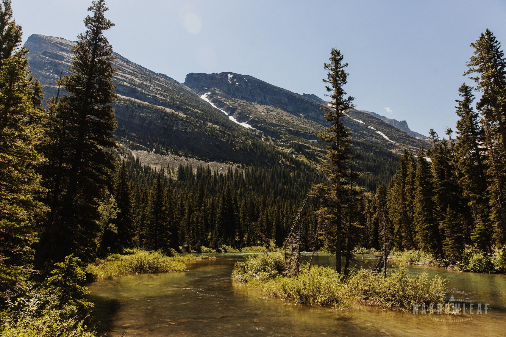 Montana-Glacier-National-Park-Many-Glacier-Narrowleaf-Love-and-Adventure-elopement-Photography-9358.jpg