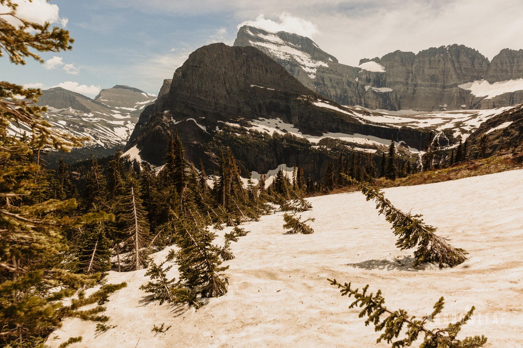 Montana-Glacier-National-Park-Many-Glacier-Narrowleaf-Love-and-Adventure-elopement-Photography-9661.jpg