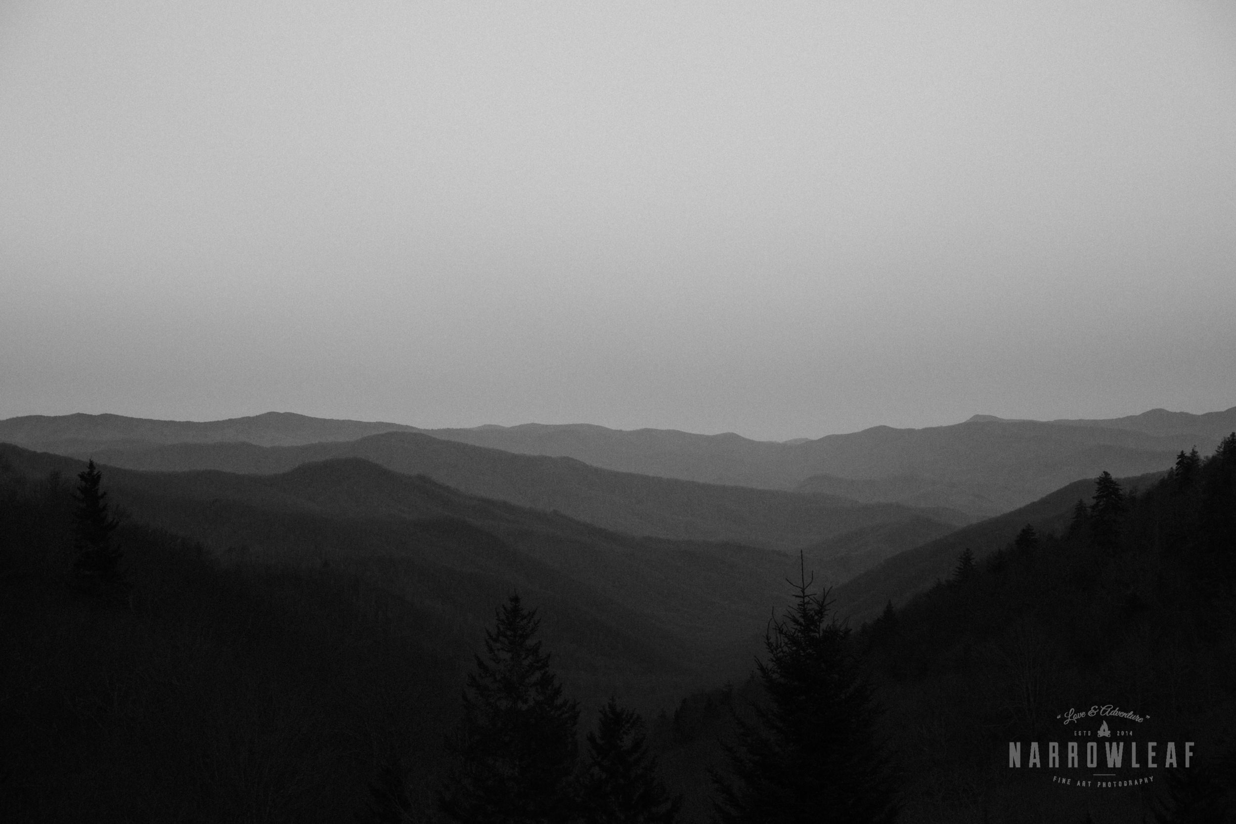 mount-mitchell-North-Carolina-elopement-photographer-Narrowleaf_Love_and_Adventure_Photography-0123.jpg