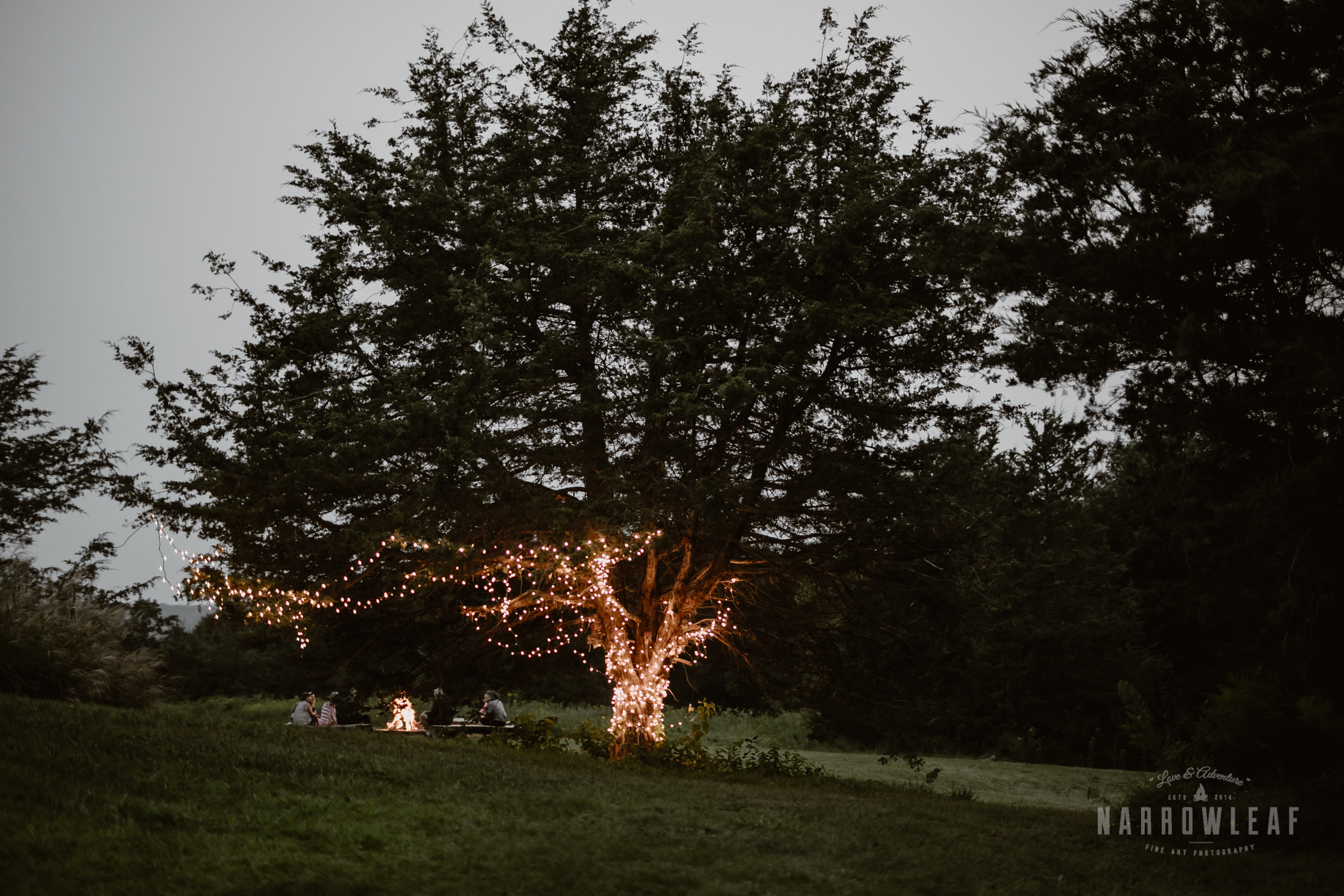 wisconsin-wedding-photographer-Narrowleaf_Love_and_Adventure_Photography-4102.jpg