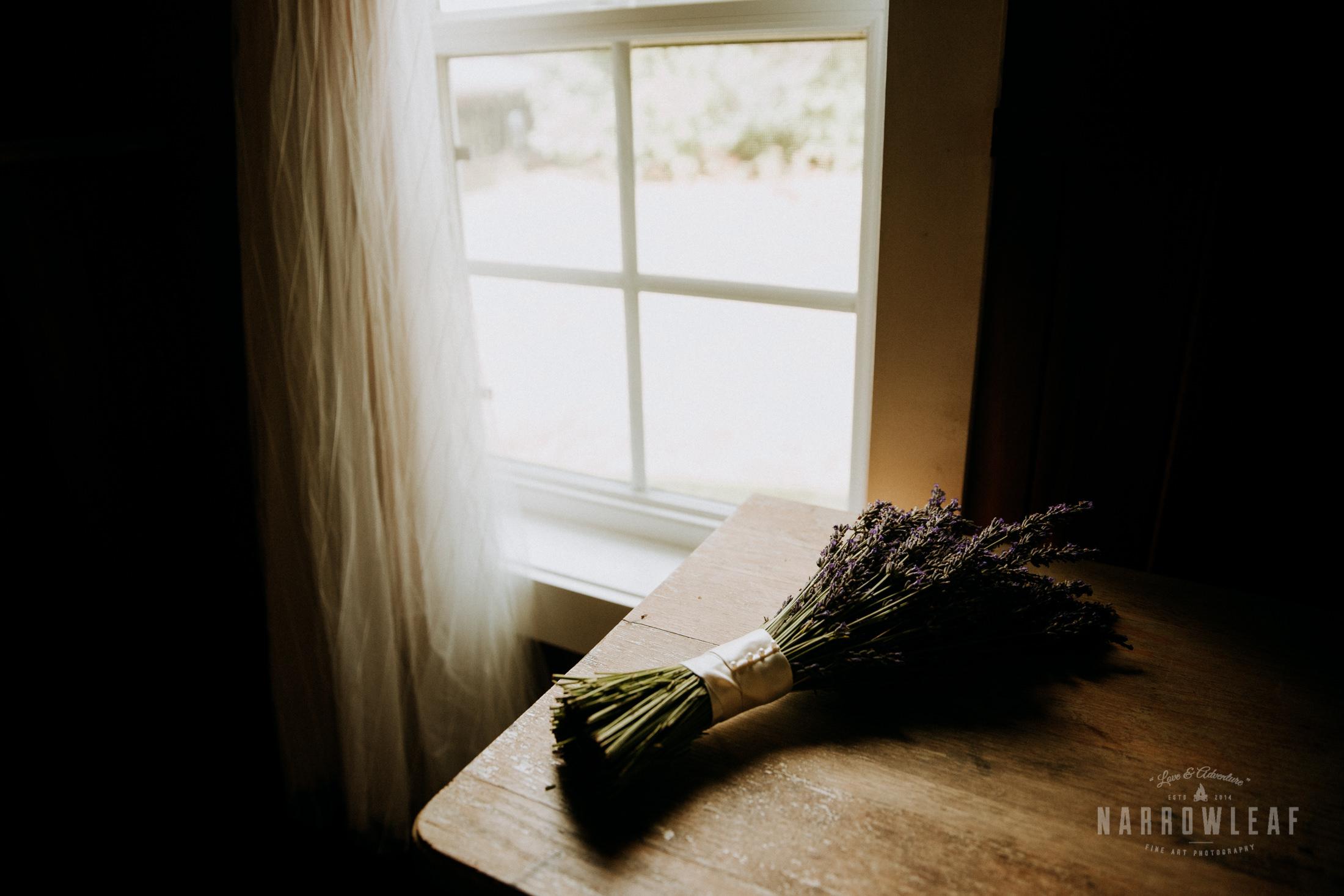 door-county-wedding-photographer-in-the-woods-Narrowleaf_Love_and_Adventure_Photography-7333.jpg