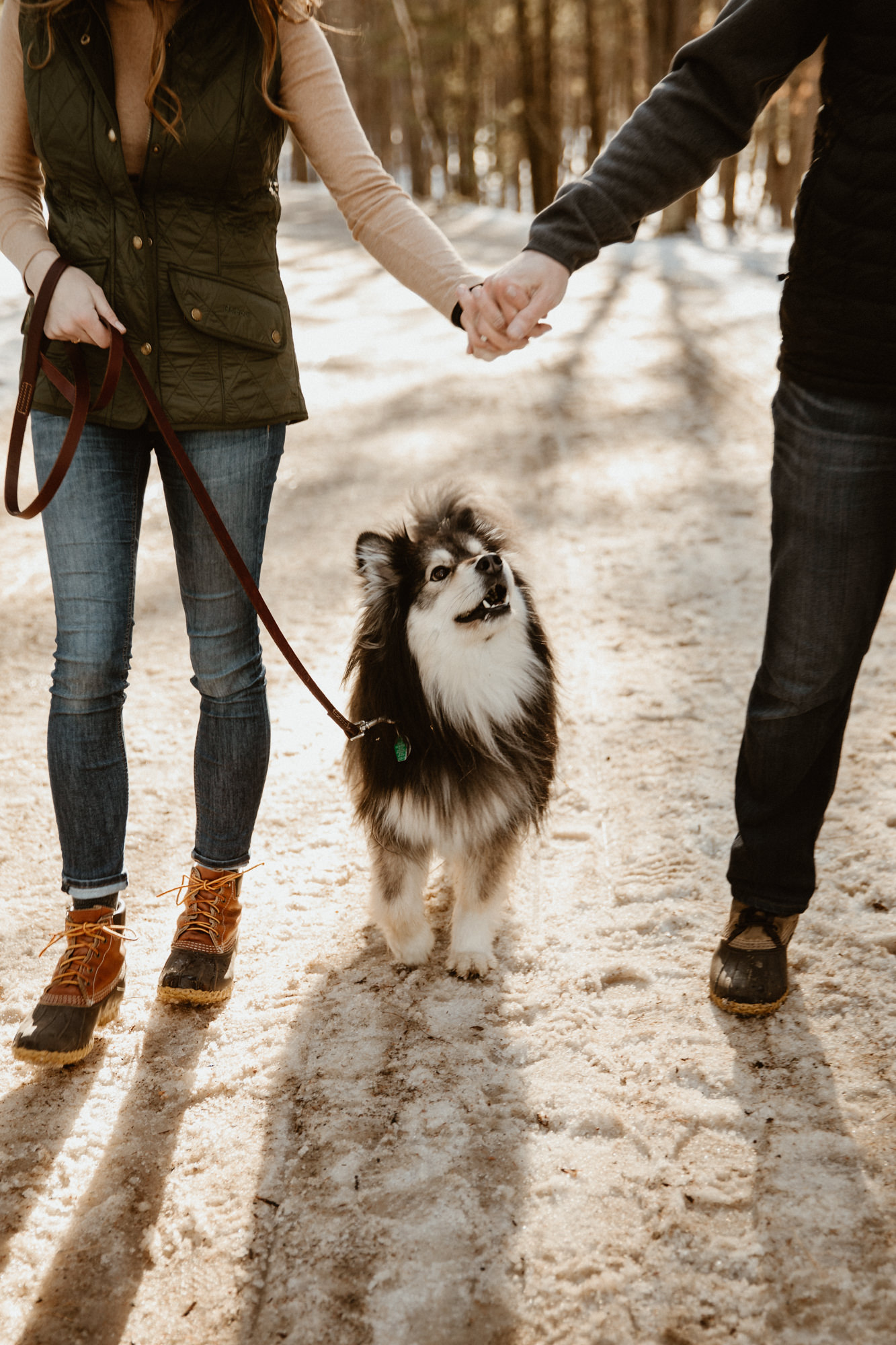 Couple walking their Finnish Lapphund puppy.