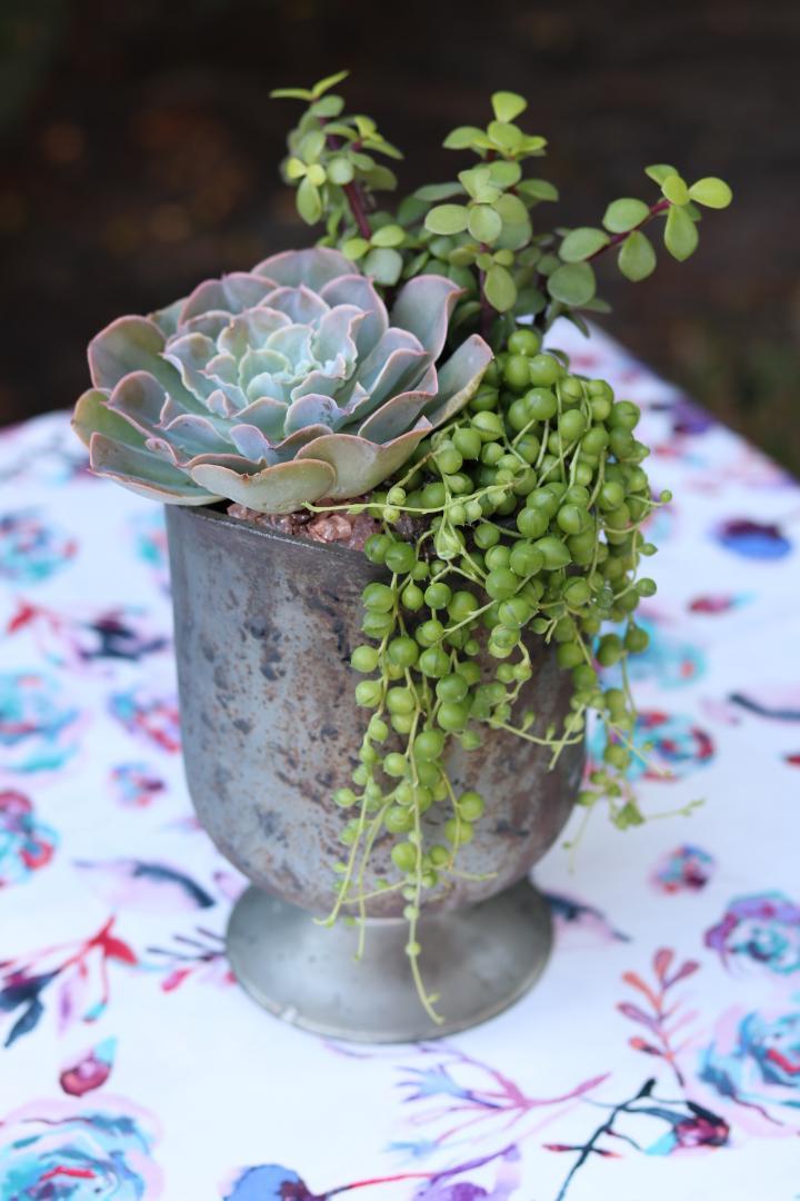 mercury glass vase.jpg