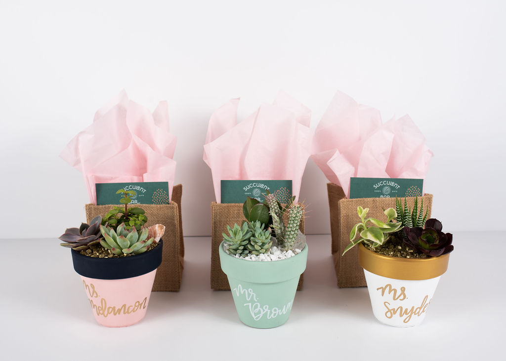"4.5"" Painted pots with a succulent trio and rock toppings, a burlap gift bag and optional custom handwritten calligraphy"