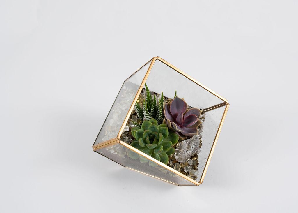 So Square - $35
