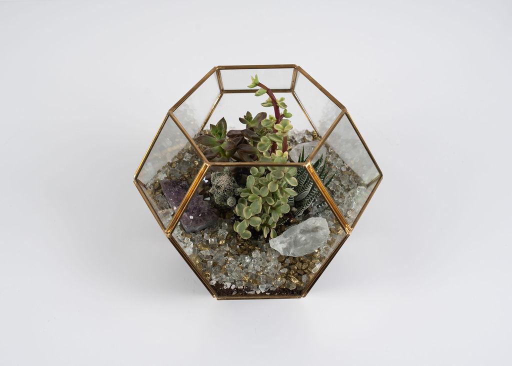 Hexa Low - $62