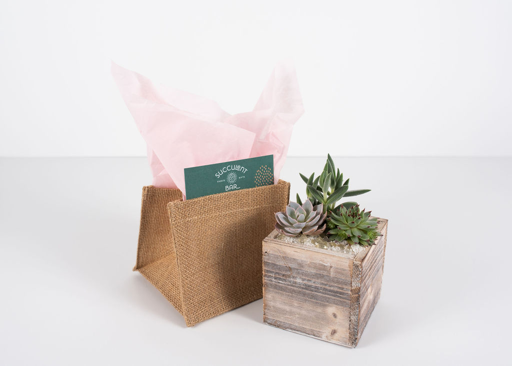 A rustic wood box container trio