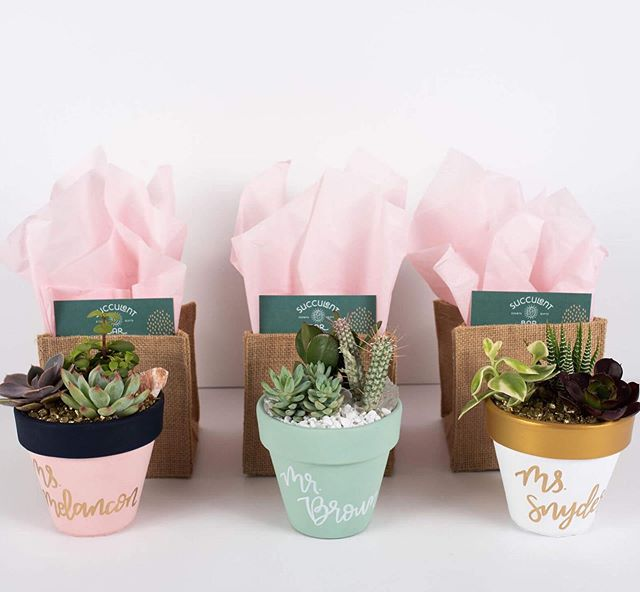 """Succulent trio arrangements are dynamite! 🧨🧨🧨 These 4.5"""" painted pots can be painted a range of colors and can include handwritten calligraphy to create one stunning gift! 🖌⠀ ⠀ Gift giving is always taken up a notch when you include details like colorful tissue paper, printed care cards, and a stylish bag. We include paper bags with handles on almost every order and event we do, but check out these adorable burlap bags!! 🛍 • Pickup in the Katy area. Delivery available at an additional charge. • • 📸 @goodomenphoto"""