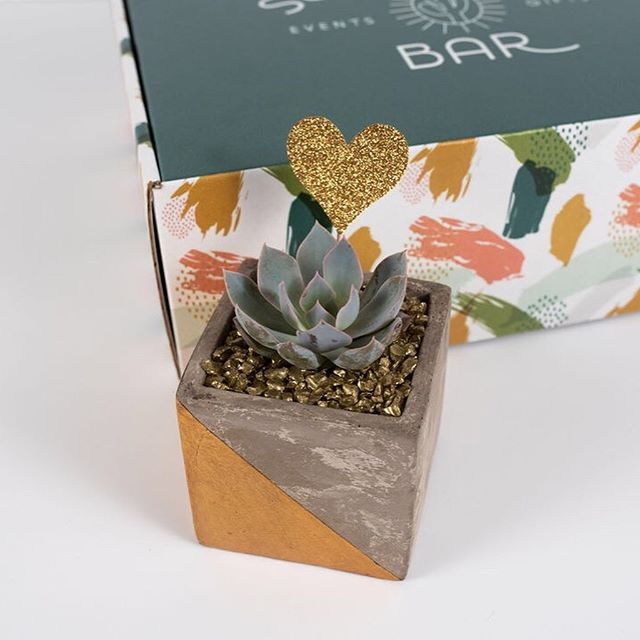 Family = Love. This sturdy, modern container with gold symmetry is the perfect planter for our Family Fun Gift Box. The DIY element of this gift box makes it a short and sweet activity that any on the go family can find the time for. ⠀ ⠀ We provide you the soil, succulent, rock toppings, and gold heart flag pick to top it off. Caring for your new succulent is perfect for a busy family since the desert plants don't like being watered too often, so if you forget about them a bit... that's totally OK!  The personalized watering can you receive is actually quite fun to use. 💧⠀ ⠀ The Spark Family Fun Matchstick Set has 50 playful ideas for laughing and spending time together as a family. What are some of people's favorite family games they enjoy playing?! For our kiddos, it's Hide and Seek at the moment. 🙈🔢 🎁🎁🎁 Delivery and pick up options around Houston. Send us a note!